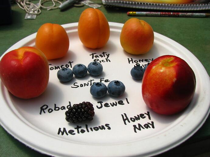 10 early fruit