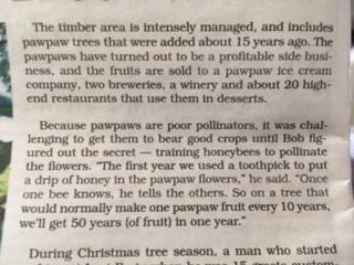 Pawpaw Pollination Newspaper Snip